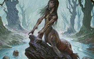 Шелки (Селки) – мифические люди-тюлени